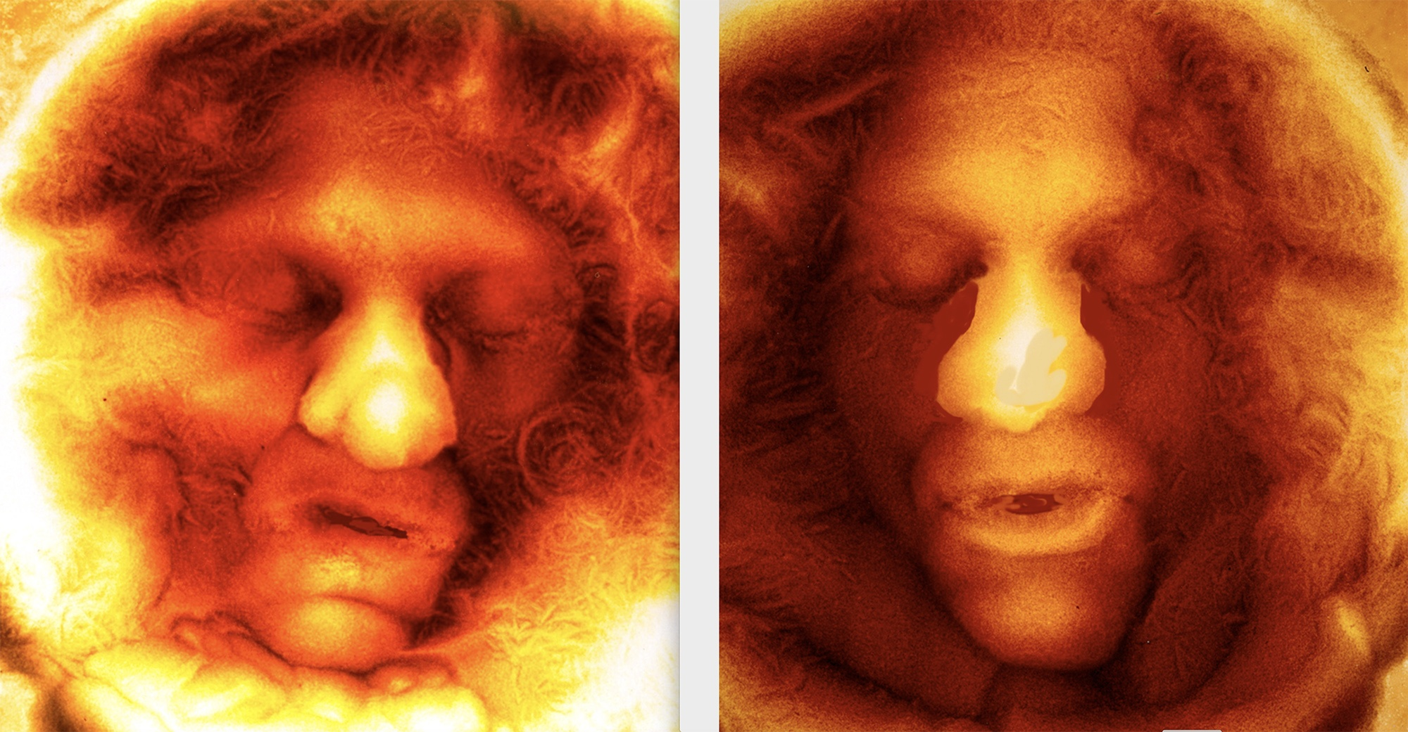 Two imprints of the artist's face made in sugar on back lit glass.