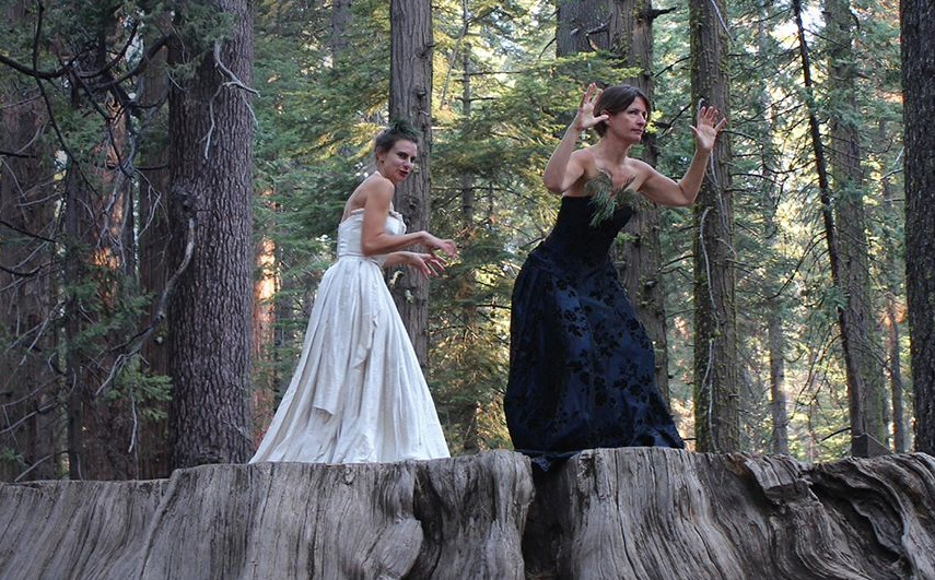 Helen Paris and Claudia Bart are standing on top of a huge cut trunk in a forest. They are wearing a black and a white gown.